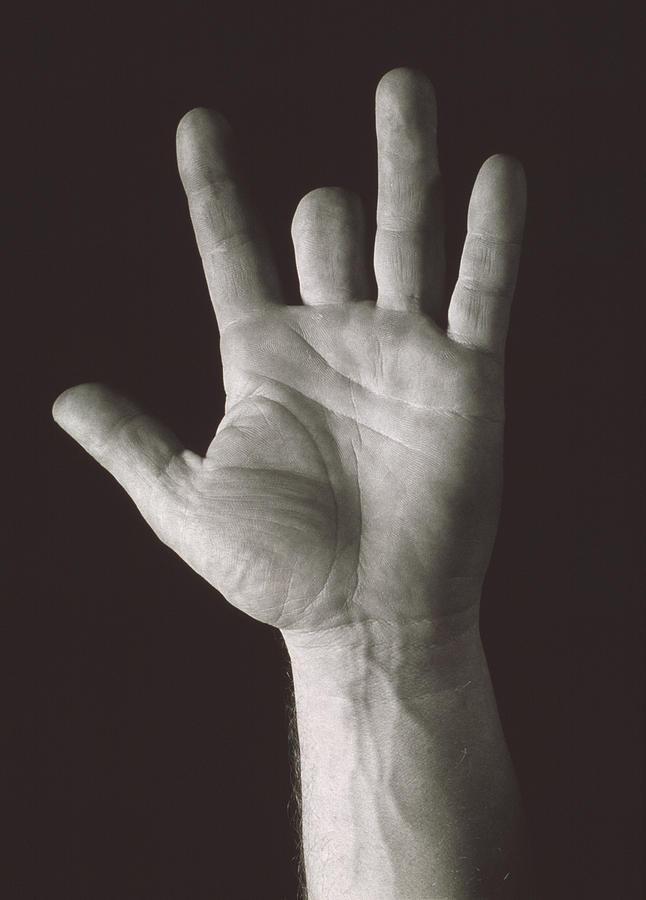 Finger Photograph - Missing Middle Finger by Alan Sirulnikoff