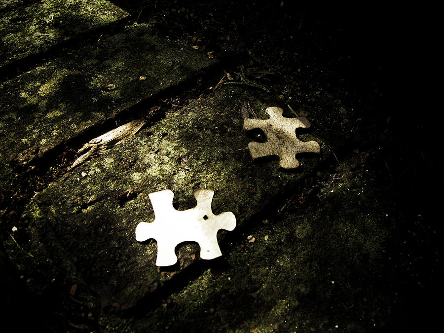 Puzzle Photograph - Missing Pieces by Jessica Brawley