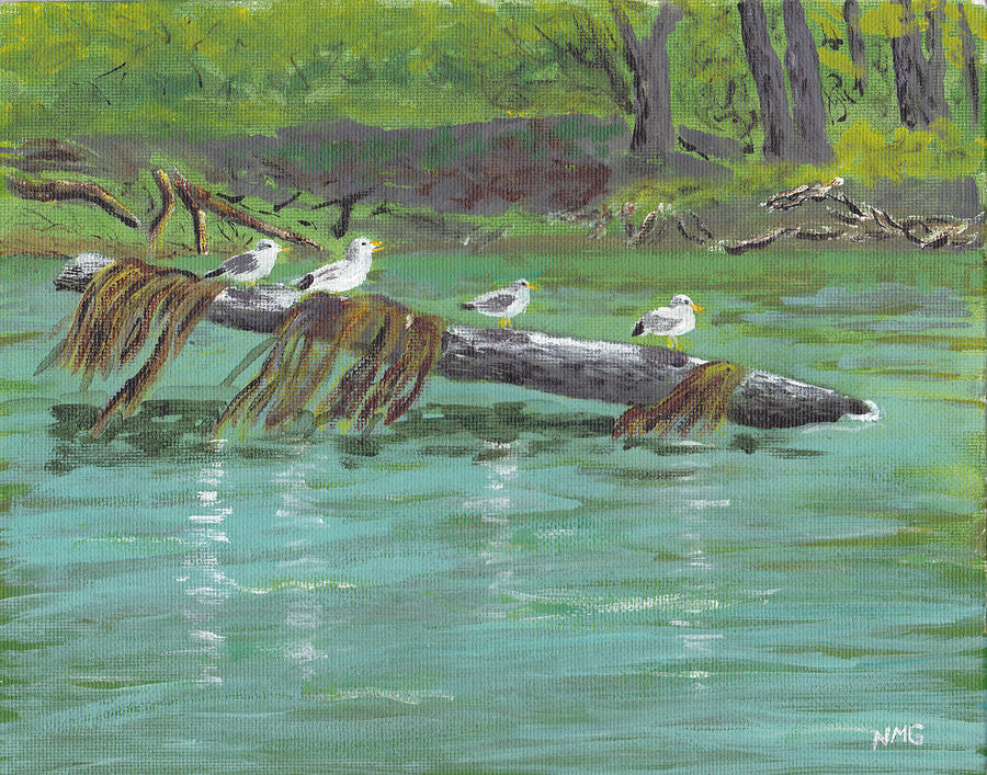 Gull Painting - Mississippi River Gulls by Nicole Grattan