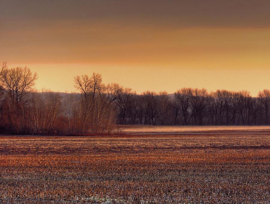 Missouri River Photograph - Missouri Bottoms Sweet Light by William Fields