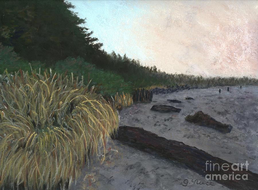 Tofino Pastel - Misty Beach by Ginny Neece