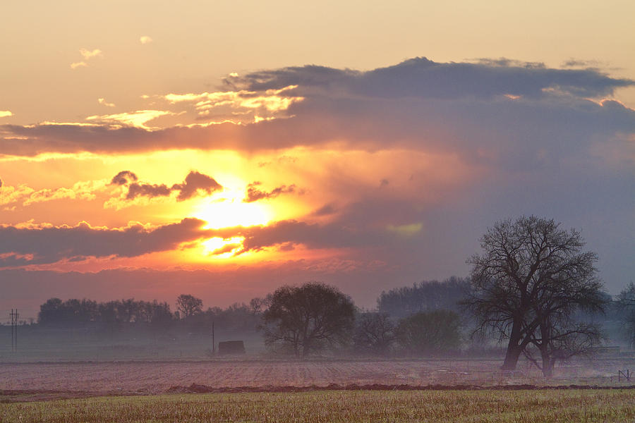 Sunrise Photograph - Misty Country Sunrise  by James BO  Insogna