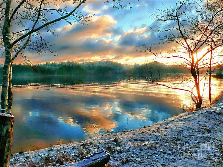 Morning Photograph - Misty Morning by Gail Bridger
