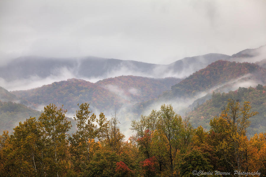Great Smoky Mountains Photograph - Misty Morning I by Charles Warren