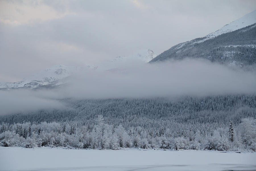 Beauty Photograph - Misty Mountain by Kim French