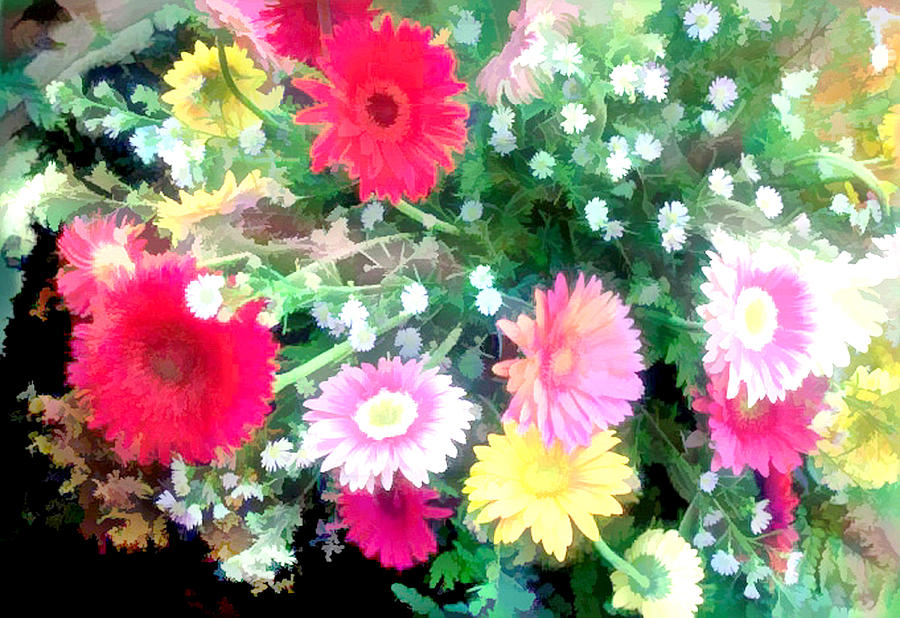 Aster Painting - Mixed Asters by Elaine Plesser
