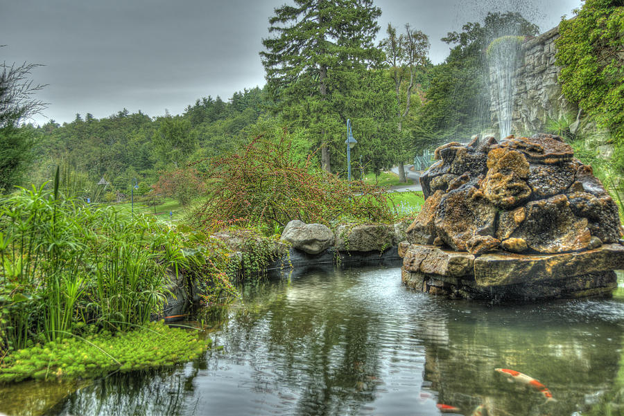 Koi Photograph - Mohonk Koi Pond On A Rainy Day by Donna Lee Blais