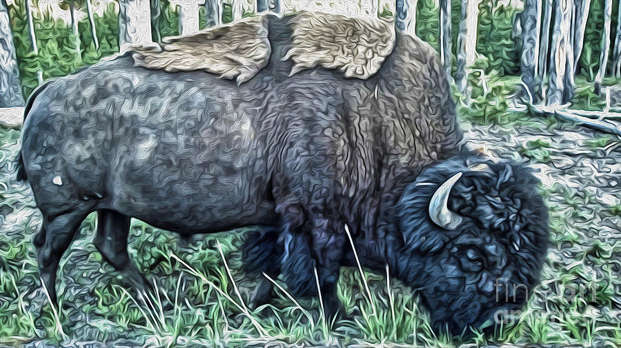 Bison Painting - Molting Bison In Yellowstone by Gregory Dyer