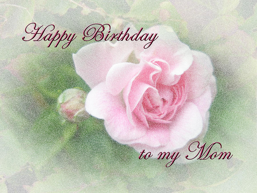 Mom Birthday Greeting Card Pink Rose Photograph By Mother Nature