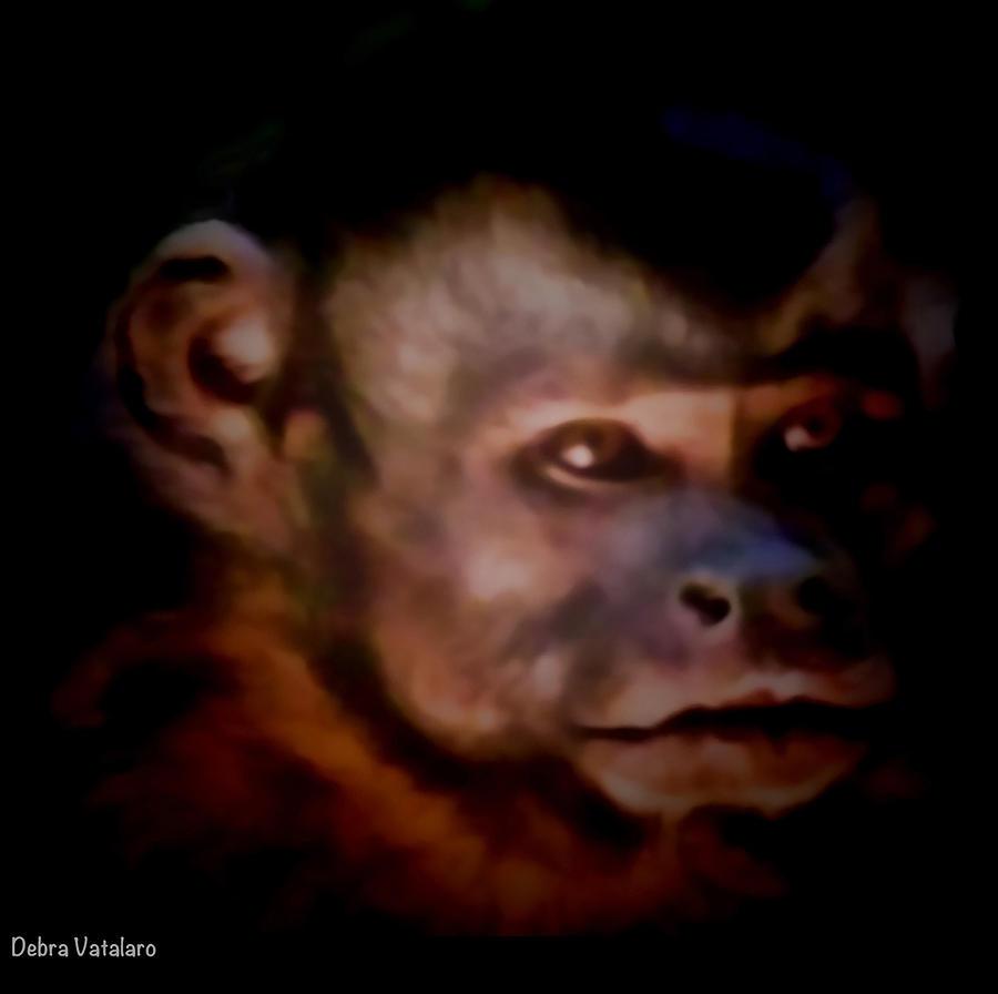 Monkey Photograph - Monkey See by Debra     Vatalaro