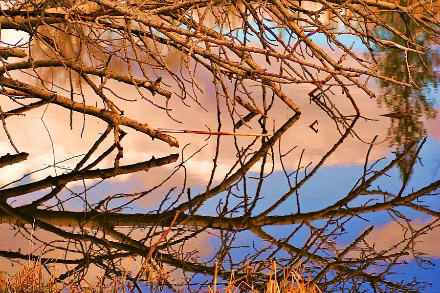 Montana Photograph - Montana Peace Pond IIi by William Kelvie