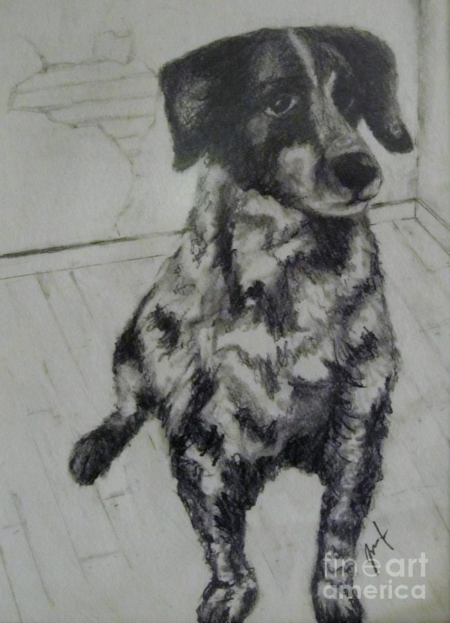 Animals Painting - Moo Marlydog by Mark Rehburg