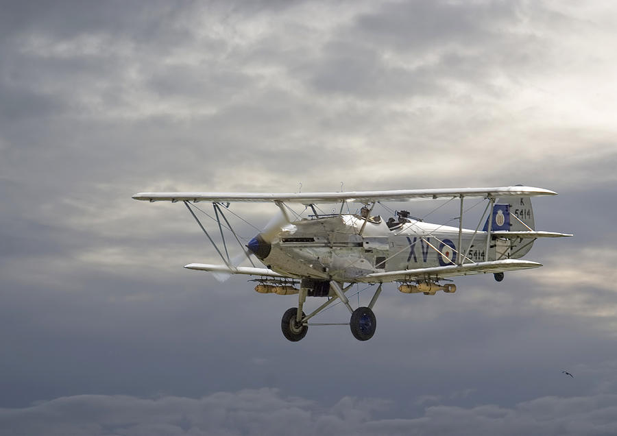 Aircraft Photograph - Moody Blue by Pat Speirs