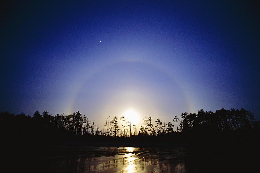 Moon Dog Photograph - Moon Dog by David Nunuk