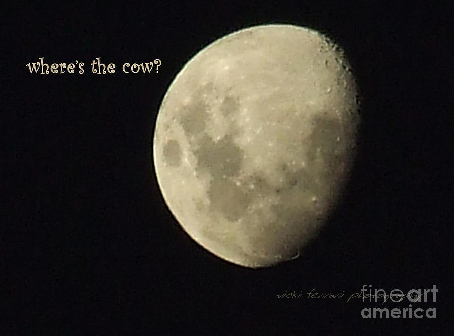 Birthday Photograph - Moon Missing Cow by Vicki Ferrari