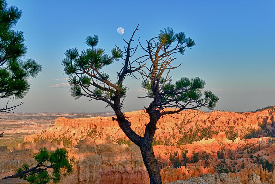 Moon Over Bryce Canyon Photograph