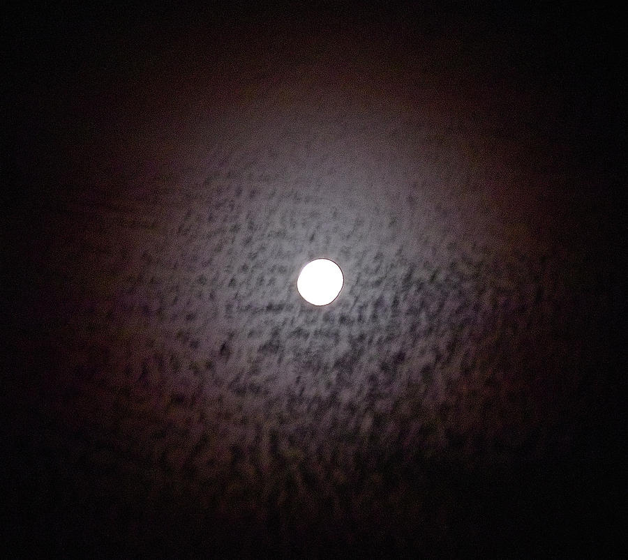 Moon Photograph - Moon Ring by Jocelyn Kahawai