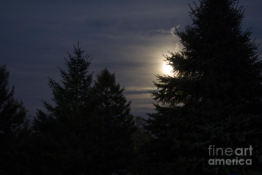 Full Moon Photograph - Moon Rising 01 by Thomas Woolworth