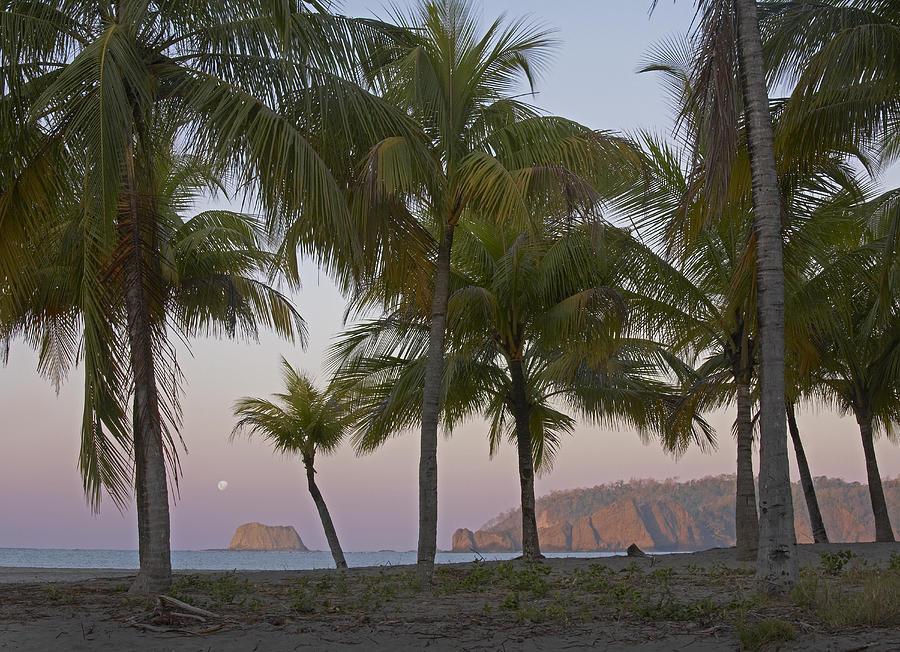 Moon Setting Playa Carillo Guanacaste Photograph by Tim Fitzharris