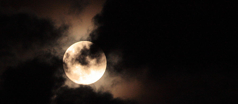 Moon Photograph - Moondance by Rachel Hames