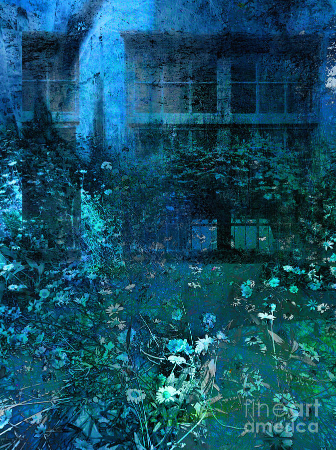 Blue Photograph - Moonlight In The Garden by Ann Powell