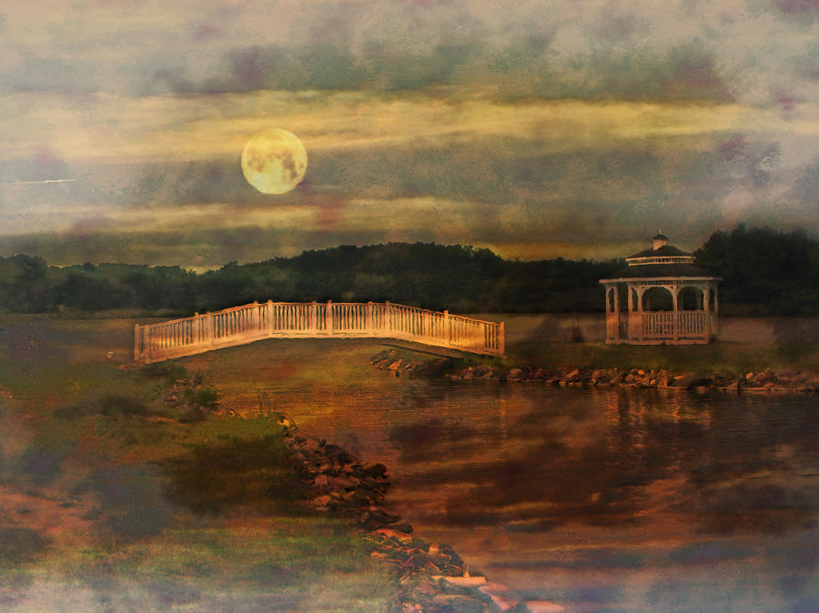Willow Lake Photograph - Moonlight Stroll by Kathy Jennings
