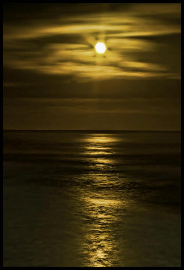 Pacific Ocean Photograph - Moonlit Pacific by Dale Stillman