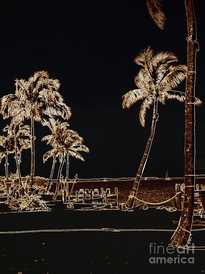 Sailboat Photograph - Moonlit Palms by Rene Triay Photography