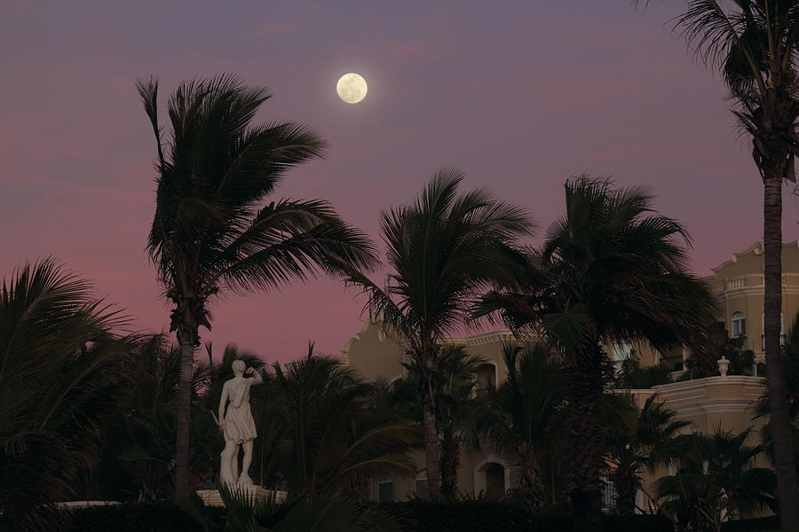 Vacation Photograph - Moonlit Resort by Shane Bechler