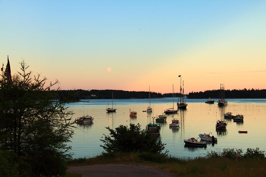 Moonrise at Burnt Coat Harbor by Doug Mills