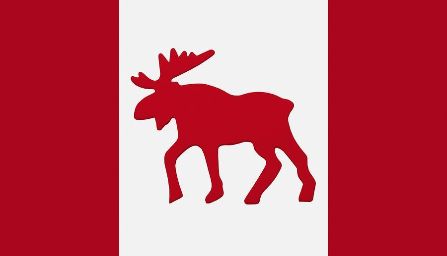 Moose Decor Canada
