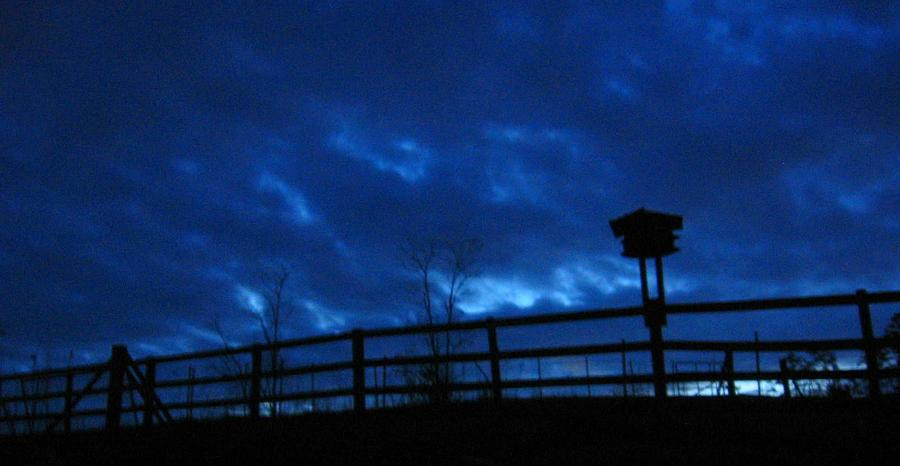 Sky Blue Photograph - Morning Blues by Deb Martin-Webster