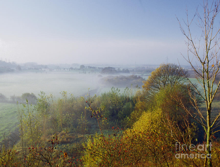 Nature Photograph - Morning Dust by Heiko Koehrer-Wagner