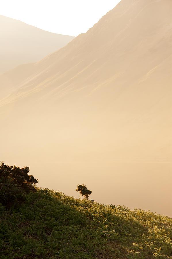Country Photograph - Morning Haze by Svetlana Sewell