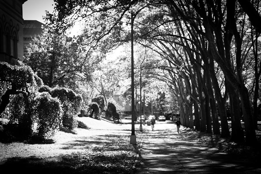 Exercise Photograph - Morning Jog by Jason Heckman