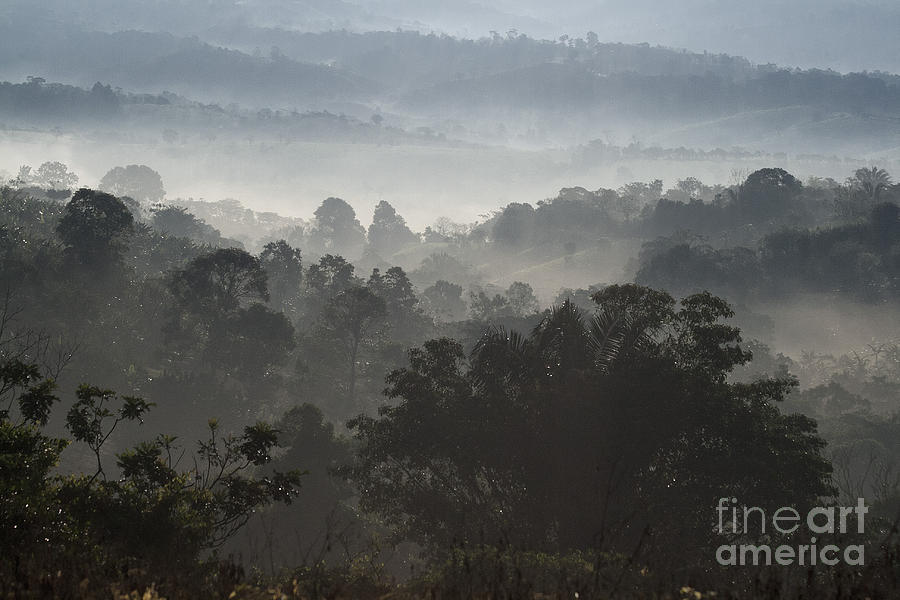 Landscape Photograph - Morning Mist In Panamas Highlands by Heiko Koehrer-Wagner