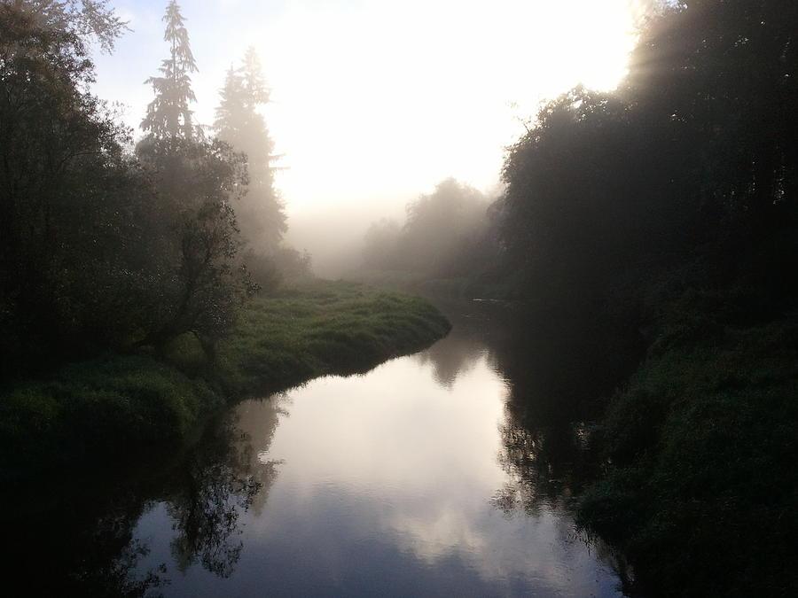 Landscape Photograph - Morning Mist by Kristina Edwards