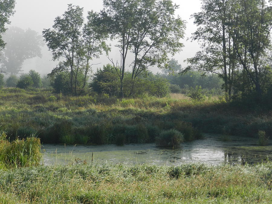 Landscape Photograph - Morning Mist On Marsh by Dennis Leatherman