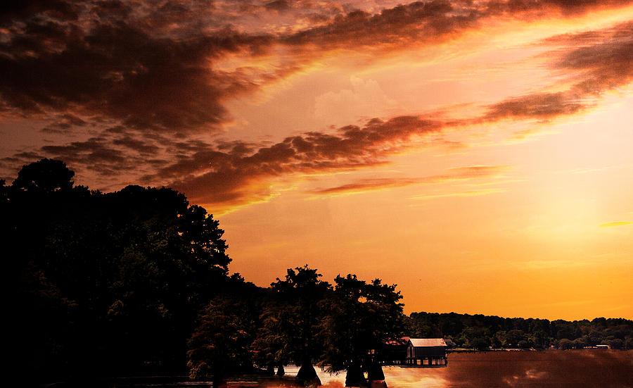 Bayou Photograph - Morning On The Bayou by Barry Jones