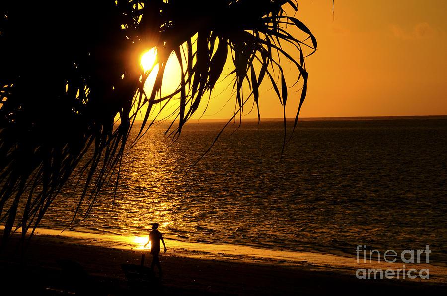Sunrise Digital Art - Morning Rays by Pravine Chester