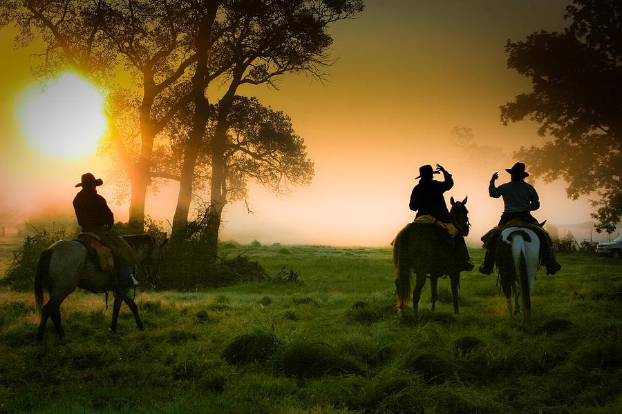 Cowboys Photograph - Morning Ride by Toni Hopper