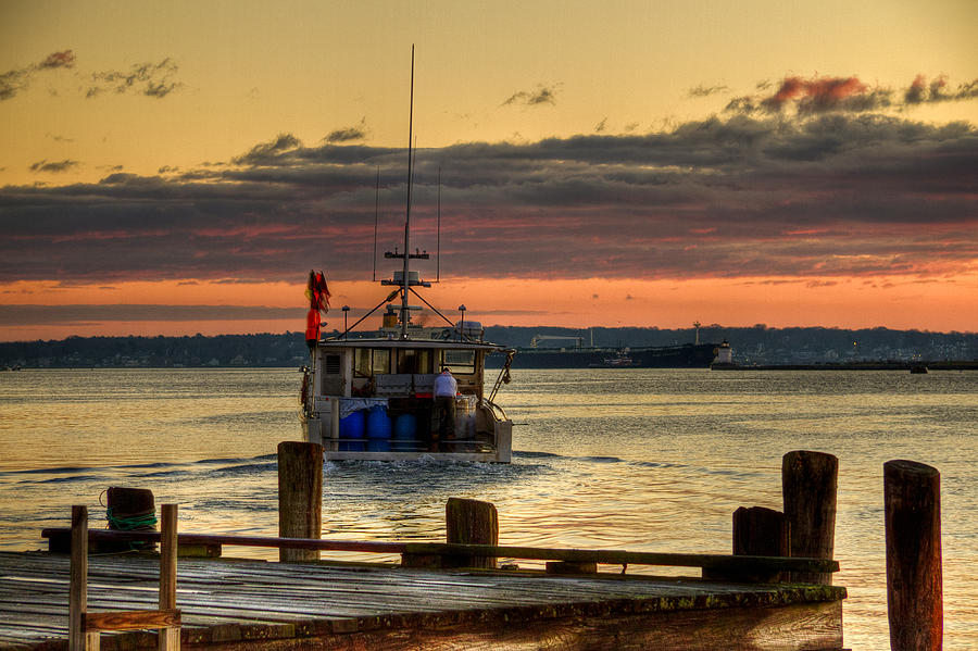 Maine Photograph - Morning Run by Brenda Giasson