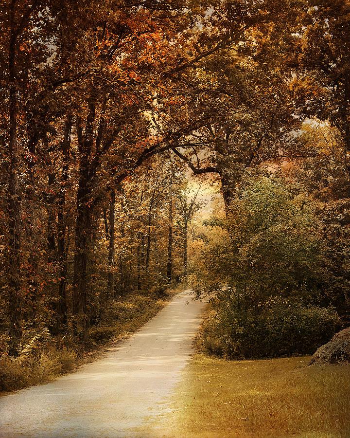 Autumn Photograph - Morning Walk by Jai Johnson