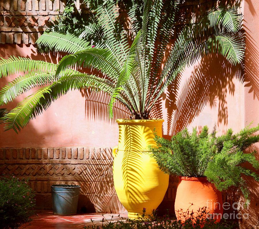 Moroccan Garden Photograph By Susan Wall