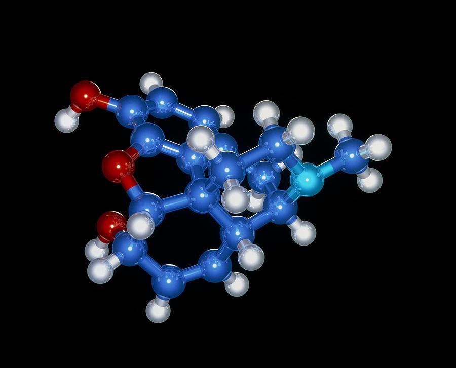 Morphine Photograph - Morphine Drug Molecule by Laguna Design