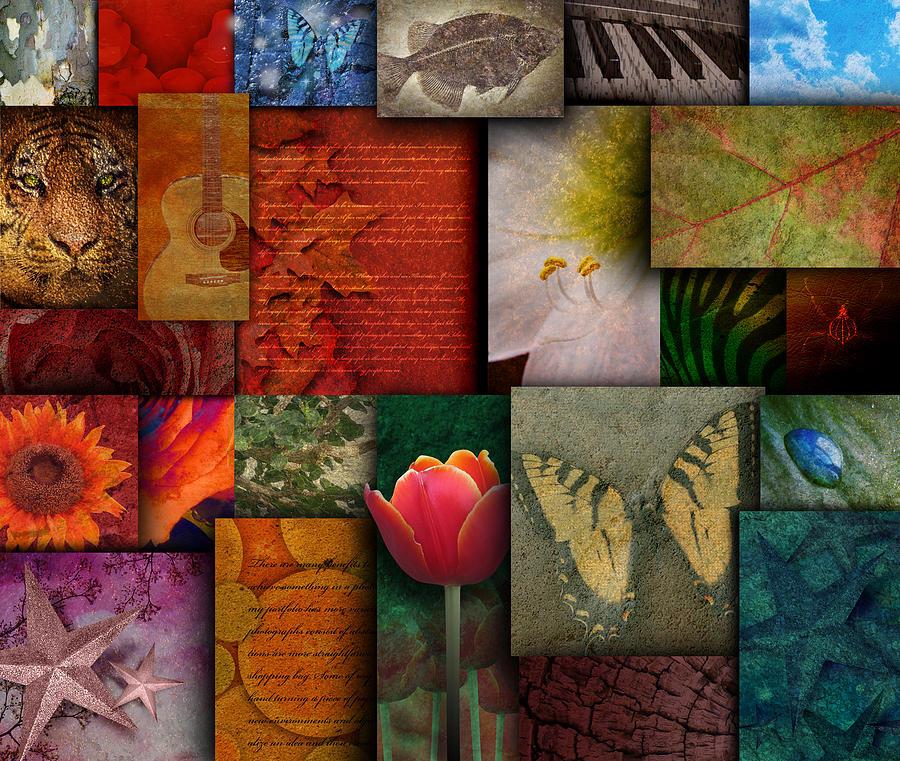 Abstract Photograph - Mosaic Earth Tone Nature Rough Patterns by Angela Waye
