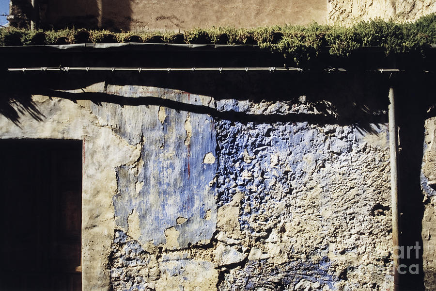 Weathered Wall Photograph - Moss On The Roof by Agnieszka Kubica