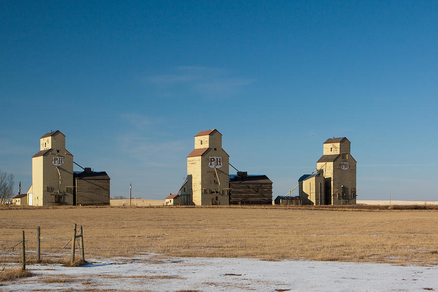 Grain Photograph - Mossleigh Alberta by Jill Lassaline