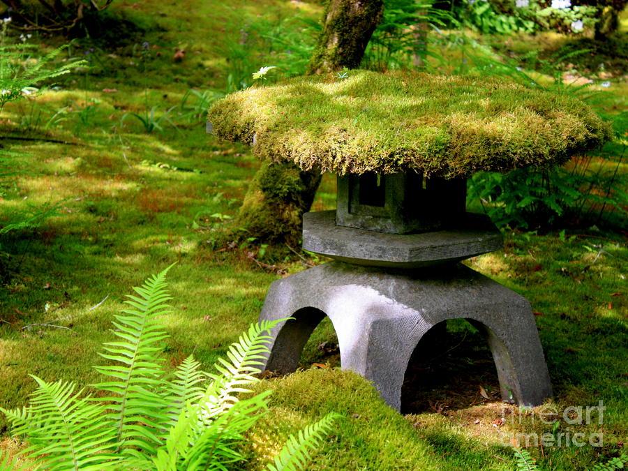 Garden Lantern Photograph   Mossy Japanese Garden Lantern By Carol Groenen