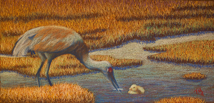 Crane Painting - Mother Sandhill Crane by Thomas Maynard